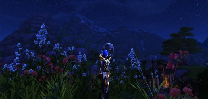 Big priest stormsong valley flowers 1